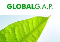 globalgap-250